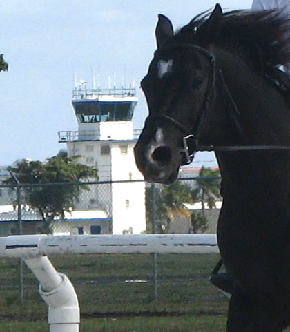 Pompano Tower near the Sand and Spurs stable and riding ring, abuts the Goodyear Blimp hangar